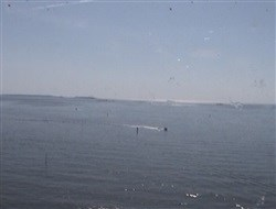 BOW Webcam - Costa neoRomantica